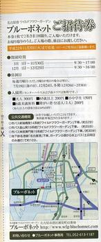 ブルーボネットご招待券.JPG